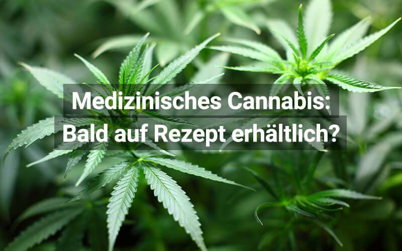 Medizinisches Cannabis: In der Schweiz bald mit Rezept?