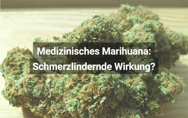 Medizinisches Cannabis Schmerzlindernd